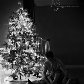 Louisville Family Photographer, Louisville Newborn Photographer, Christmas Tree Pictures